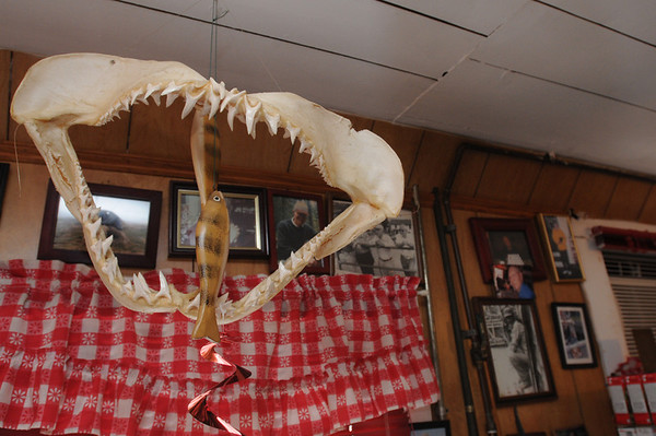 Marblehead:<br /> Maritime -themed decor at the Driftwood restaurant. This is a jaw with teeth from a shark.<br /> Photo by Ken Yuszkus/Salem News, Friday August 6, 2010.