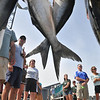 Marblehead:   Contestants of Pete's Fishing Derby gather to see the day's biggest fish.  photo by Mark Teiwes