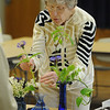 Marblehead:<br /> Barbara Dowd, of Marblehead, does some last minute arranging of her floral display at the Arrangers of Marblehead meeting at The Unitarian Universalist Church of Greater Lynn.<br /> Photo by Ken Yuszkus/Salem News, Wednesday, May 12, 2010.