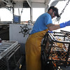 Marblehead:<br /> Joey Sylvester and his son, Cam, lobster off of Marblehead.<br /> Photo by Ken Yuszkus/Salem News, Tuesday, June 21, 2011.Marblehead:<br /> Joey Sylvester and his son, Cam, lobster off of Marblehead.<br /> Photo by Ken Yuszkus/Salem News, Tuesday, June 21, 2011.