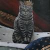"KEN YUSZKUS/Staff photo.    Alicia Cohen's acrylic painting, ""King Buddy"".   01/25/16."