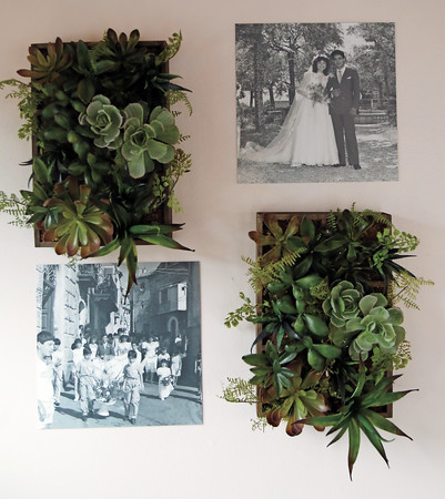 Wall decorations include many old family photos of the Scalzi family, adding to the homely and welcoming feel.