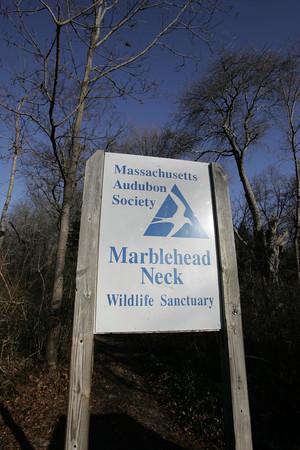MARBLEHEAD:<br /> The Massachusetts Audubon Society Marblehead Neck Wildlife Sanctuary.<br /> Photo by Ken Yuszkus/The Salem News, Thursday, December 13, 2012.