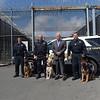 190424_mid_tje_sheriff_dogs_01.jpg