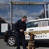 190424_mid_tje_sheriff_dogs_08.jpg
