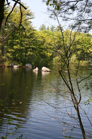 AMY SWEENEY/Staff photo. <br /> Stearns Pond at Harold Parker State Forest.<br /> The Park Interpreter and volunteer leaders guide a slow paced walk through the forest while enjoying nature at its finest. Each week we hike to a different part of the forest for a series of 12 hikesMay 25, 2016