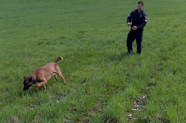 190424_mid_tje_sheriff_dogs_11.jpg