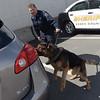 190424_mid_tje_sheriff_dogs_09.jpg
