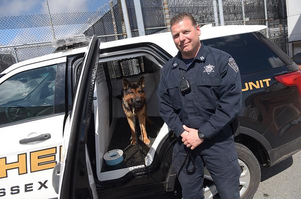 190424_mid_tje_sheriff_dogs_04.jpg