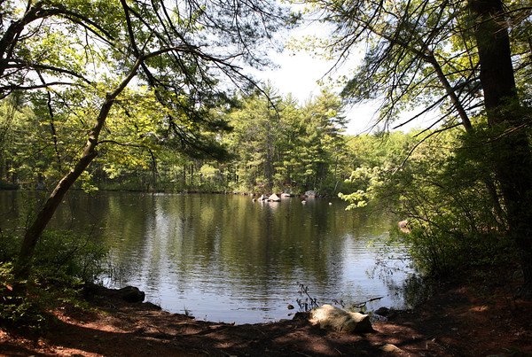 AMY SWEENEY/Staff photo. <br /> Stearns Pond at Harold Parker State Forest, which is 3,500 acres of land primarily used for camping, fresh water swimming and hiking.<br /> May 25, 2016