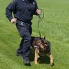 190424_mid_tje_sheriff_dogs_12.jpg