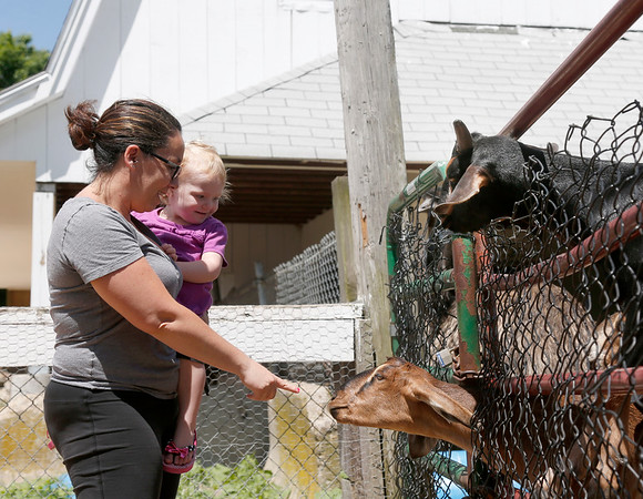 Angela O'Brien, of Peabody, points out a goat to her daughter Brooke, 2, at Brooksby Farm in Peabody. Photo by Mary Schwalm