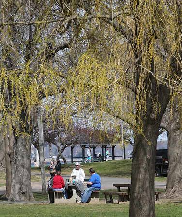 KEN YUSZKUS/Staff photo.    People sit under the willow trees at Salem Willows.      04/18/16