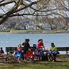 KEN YUSZKUS/Staff photo.    People picnic under the trees with a view of Salem Harbor at Salem Willows.      04/18/16