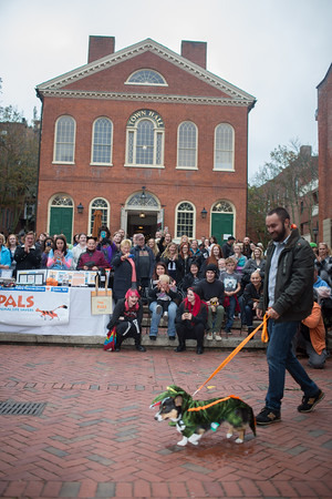 Jared Charney / Photo Matt Rusteika walks Watson the Alligator at the Second Annual Howl-o-ween Pet Parade on Derby Square in Salem, October 2, 2016.