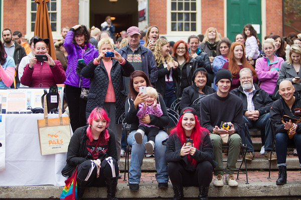 Jared Charney / Photo A large crowd delighted by the Second Annual Howl-o-ween Pet Parade on Derby Square in Salem, October 2, 2016.