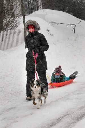 BRYAN EATON/Staff Photo. The cold temperature and whipping snow didn't discourage Stacey Pare, with daughter Callie, 8, and pooch, Rosie, from taking a walk along High Street in Newburyport on Tuesday morning.