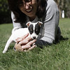 MARY SCHWALM/Staff Photo.  Joanna Reck with a foster puppy. 9/20/10