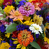 RYAN HUTTON/ Staff photo<br /> Fresh cut flowers from Tselios Family Farm in Methuen laid out for sale at the Andover Famer's Market .