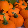 RYAN HUTTON/ Staff photo<br /> Baby pumpkins from Gaouette Farm at the Andover Farmer's Market.