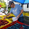 RYAN HUTTON/ Staff photo<br /> Colin Leland, of Andover, looks over the peaches from Boston Hill Farm at the Andover Farmer's Market.