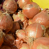 RYAN HUTTON/ Staff photo<br /> Ripe onions from Boston Hill Farm  the Andover Farmer's Market.