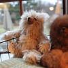 MARY SCHWALM/Staff photo Toy bears made from Alpaca. 12/21/14