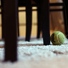 MARY SCHWALM/Staff photo A tennis ball rests at the feet of a table in the dining room. 6/25/14