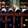 MARY SCHWALM/Staff photo A mounted deer peeks out from a library of wine. 3/25/14
