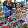 CARL RUSSO Staff photo. READINGS MAGAZINE:  The Farmers Market at Ipswich River Park in North Reading is every Wednesday from 4 pm to 7 pm. It started in June and will end on Sept. 28th. Mays Hanegraaff of North Reading and her daughters, Eva, 9 and Jemma, 6 buy some vegetables from Farmer Dave's CSA of Dracut. Strawberries and Cortland apples decorate the table.  6/22/2016