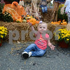 JIM VAIKNORAS/Staff photo Lucy Lovett, 1, holds up a little pumpkin at the Calareso's Farm Stand display at the Reading Fall Street Fair.