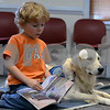 "RYAN HUTTON/ Staff photo<br /> Jack Healey, 4, of North Reading, reads a book called ""Cool Cars"" to Listening Lydia, a comfort dog brought to the Flint Memorial Library."