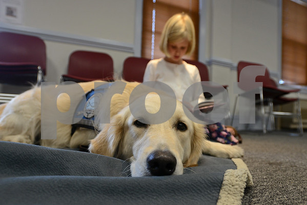 """RYAN HUTTON/ Staff photo<br /> Maeve Easler, 7, of North Reading, reads """"Clifford is a Star"""" to Listening Lydia, a comfort dog brought to the Flint Memorial Library."""