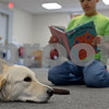 "RYAN HUTTON/ Staff photo<br /> Jeffrey Bustin, 12, of North Reading, reads the book ""The Cat Barked?"" to Listening Lydia, a comfort dog brought to the Flint Memorial Library."