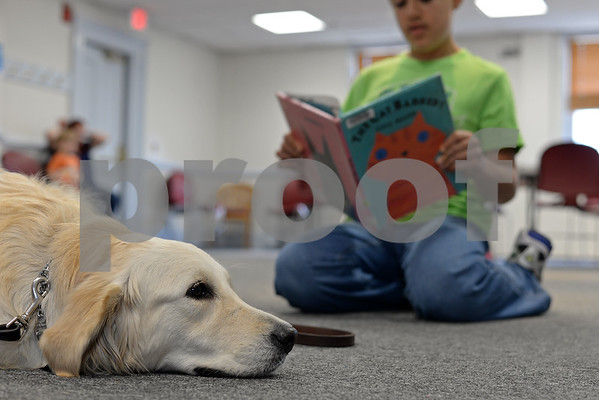 """RYAN HUTTON/ Staff photo<br /> Jeffrey Bustin, 12, of North Reading, reads the book """"The Cat Barked?"""" to Listening Lydia, a comfort dog brought to the Flint Memorial Library."""