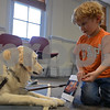 """RYAN HUTTON/ Staff photo<br /> Jack Healey, 4, of North Reading, shows the pictures in a book called """"Cool Cars"""" to Listening Lydia, a comfort dog brought to the Flint Memorial Library."""