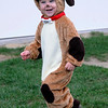 TIM JEAN/Staff photo  <br /> Griffin Carballo, 2, dressed as a puppy runs toward the kids costume parade during Windham Harvest Fest at Griffin Park. 10/17/15