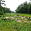 TIM JEAN/Staff photo<br /> The view from the top of the old dam that once held back the water of Moeckel Pond in Windham. A group of people who are trying to raise money to replace the old dam and hope to restore the 40 acres of wetlands.   6/28/16
