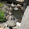 TIM JEAN/Staff photo<br /> The old mill stone wheels sit in the ruins of the old dam that once held back the water of Moeckel Pond in Windham.  6/21/16