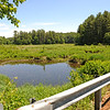 TIM JEAN/Staff photo<br /> The view from Moeckel Pond Road the splits Moeckel Pond in Windham.  6/21/16