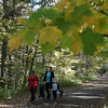 MARY SCHWALM/Staff photo Along the rail trail in Windham. 10/12/14