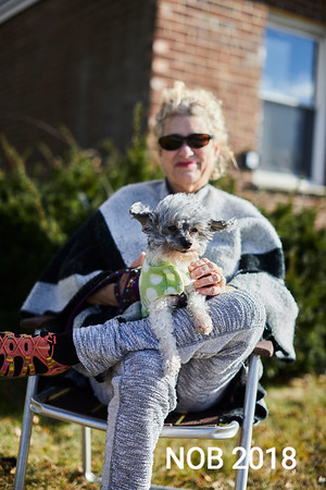 Patti Whitfield with her dog Louie enjoying the Beverly Holiday Parade, Sunday, November 26, 2017. Jared Charney / Photo