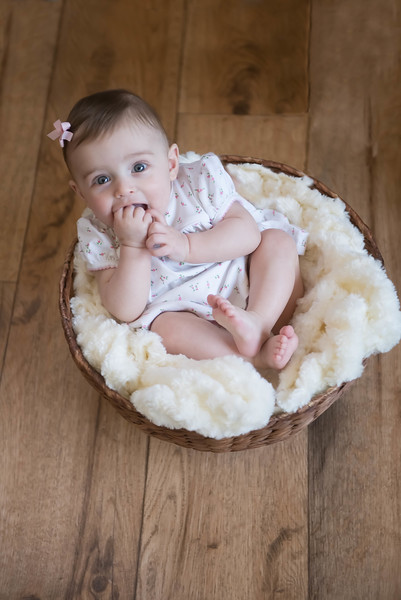 Maggie Mae :: 6 Months