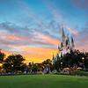 Magic Kingdom - Rose Garden Sunset