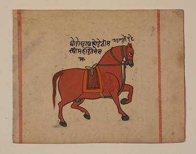 Painting of a Horse probably from a dispersed Shalihotra Samhita (treatise on veterinary medicine)