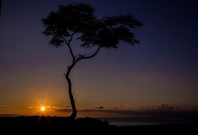 Magic of Maui