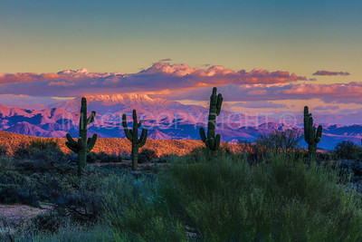 Sunset over Snow-Capped Four Peaks Mountain