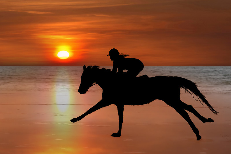 silhouette of a horse and rider galloping on beach