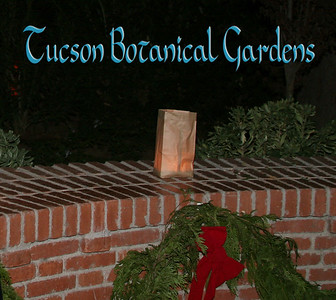 Luminaria Nights - Tucson Botanical Gardens 2010