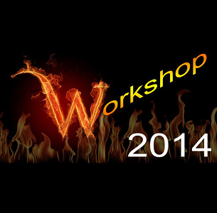 Workshop 2014